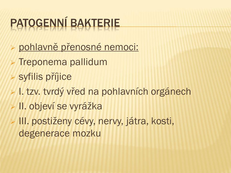  pohlavně přenosné nemoci:  Treponema pallidum  syfilis příjice  I. tzv. tvrdý vřed na pohlavních orgánech  II. objeví se vyrážka  III. postižen