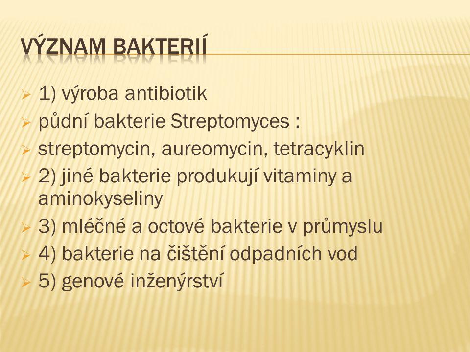  1) výroba antibiotik  půdní bakterie Streptomyces :  streptomycin, aureomycin, tetracyklin  2) jiné bakterie produkují vitaminy a aminokyseliny  3) mléčné a octové bakterie v průmyslu  4) bakterie na čištění odpadních vod  5) genové inženýrství
