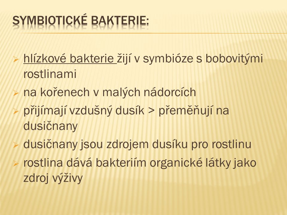 Poznej, o jakou jde bakterii