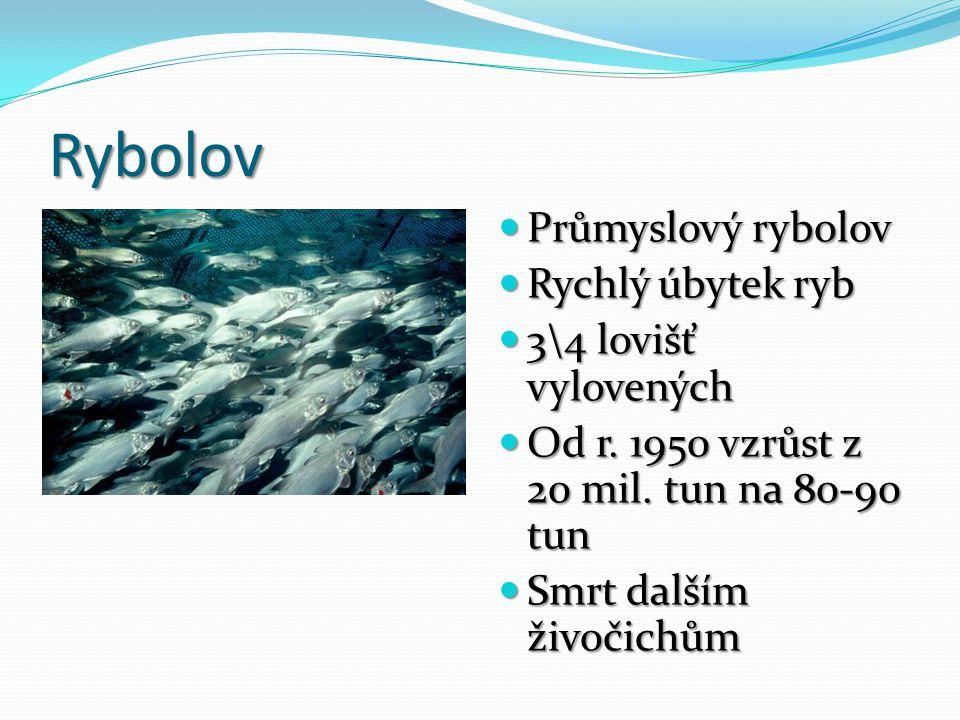 Rybolov Průmyslový rybolov Průmyslový rybolov Rychlý úbytek ryb Rychlý úbytek ryb 3\4 lovišť vylovených 3\4 lovišť vylovených Od r. 1950 vzrůst z 20 m