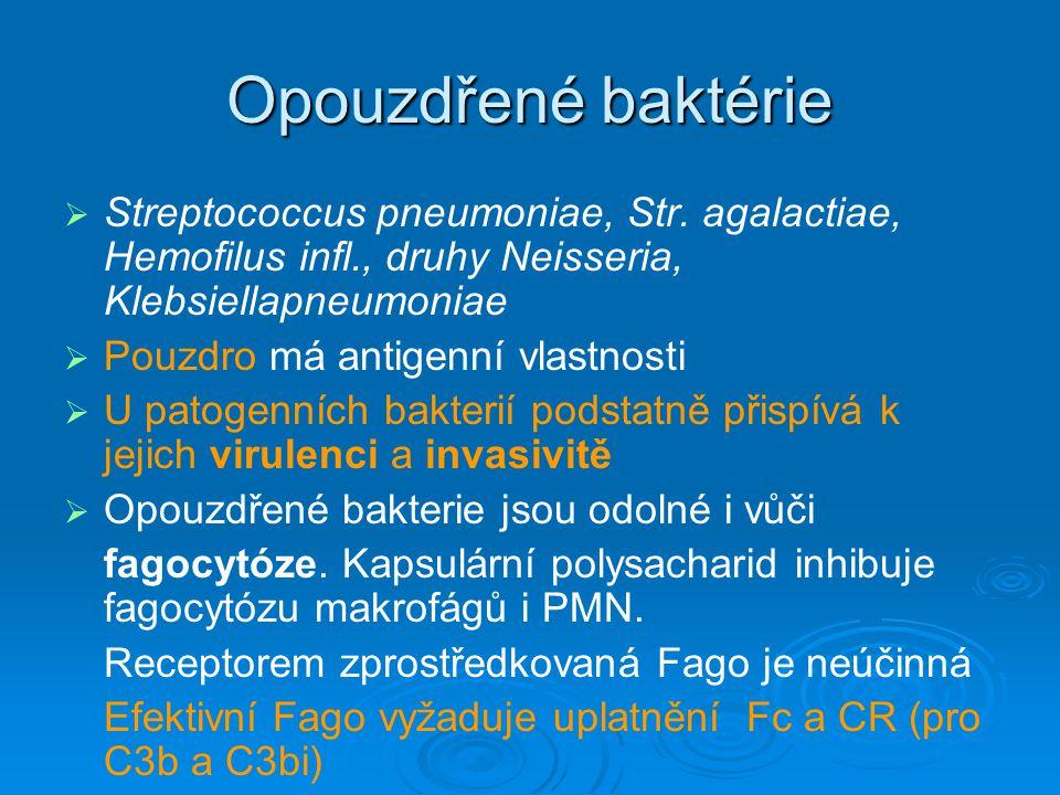 Opouzdřené baktérie   Streptococcus pneumoniae, Str. agalactiae, Hemofilus infl., druhy Neisseria, Klebsiellapneumoniae   Pouzdro má antigenní vla