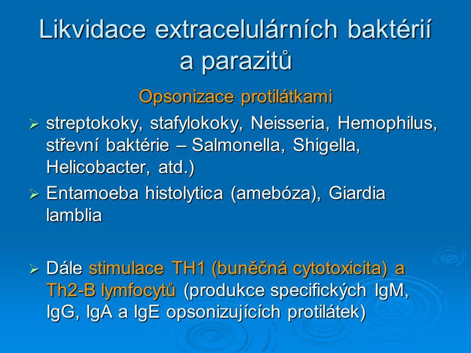 Likvidace extracelulárních baktérií a parazitů Opsonizace protilátkami  streptokoky, stafylokoky, Neisseria, Hemophilus, střevní baktérie – Salmonell