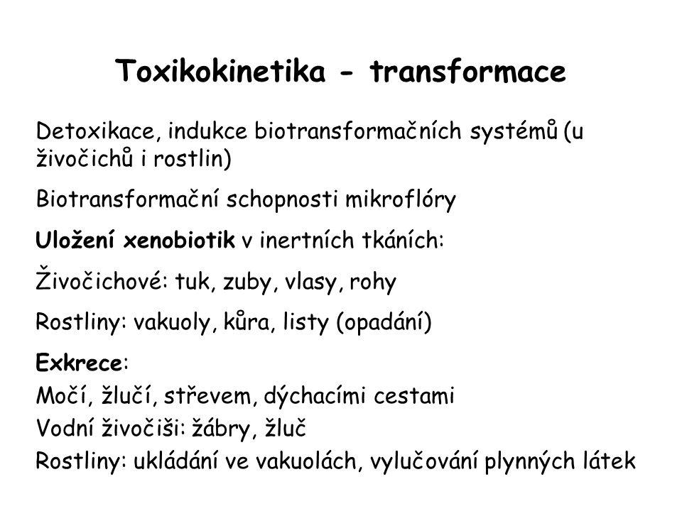 Toxikokinetika - transformace Detoxikace, indukce biotransformačních systémů (u živočichů i rostlin) Biotransformační schopnosti mikroflóry Uložení xe