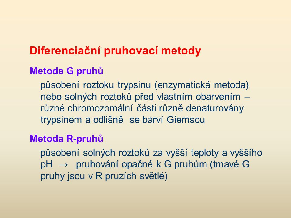Diferenciační pruhovací metody Metoda G pruhů působení roztoku trypsinu (enzymatická metoda) nebo solných roztoků před vlastním obarvením – různé chro