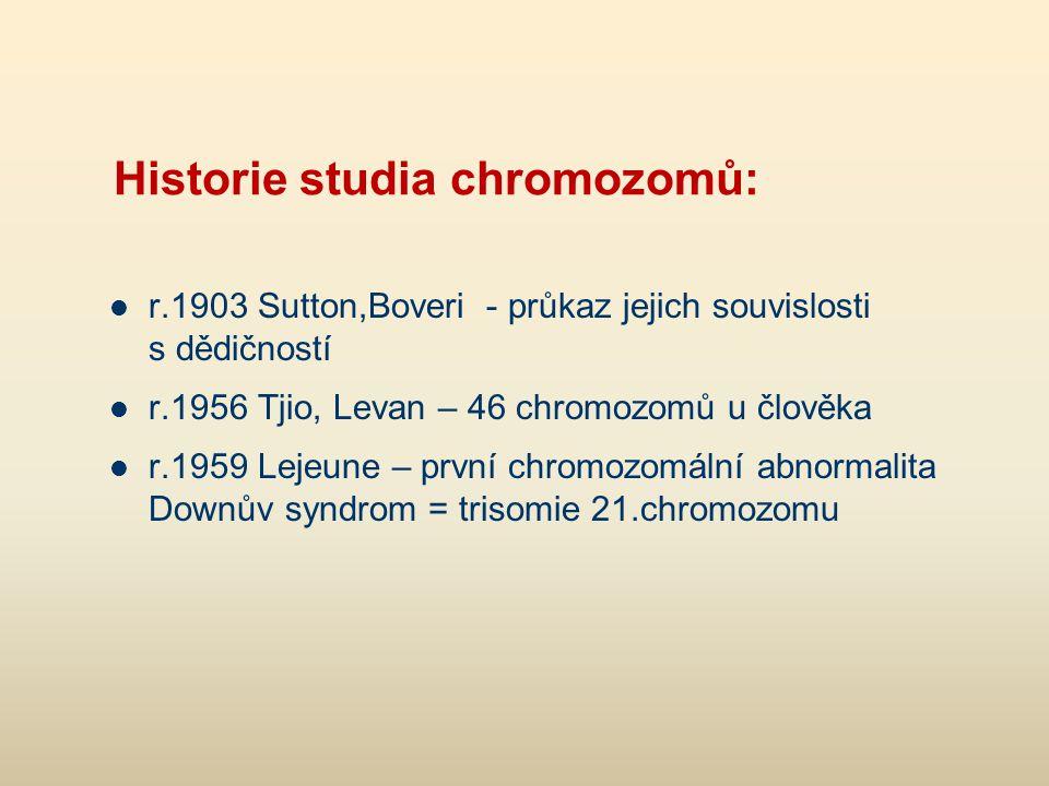 Historie studia chromozomů: r.1903 Sutton,Boveri - průkaz jejich souvislosti s dědičností r.1956 Tjio, Levan – 46 chromozomů u člověka r.1959 Lejeune