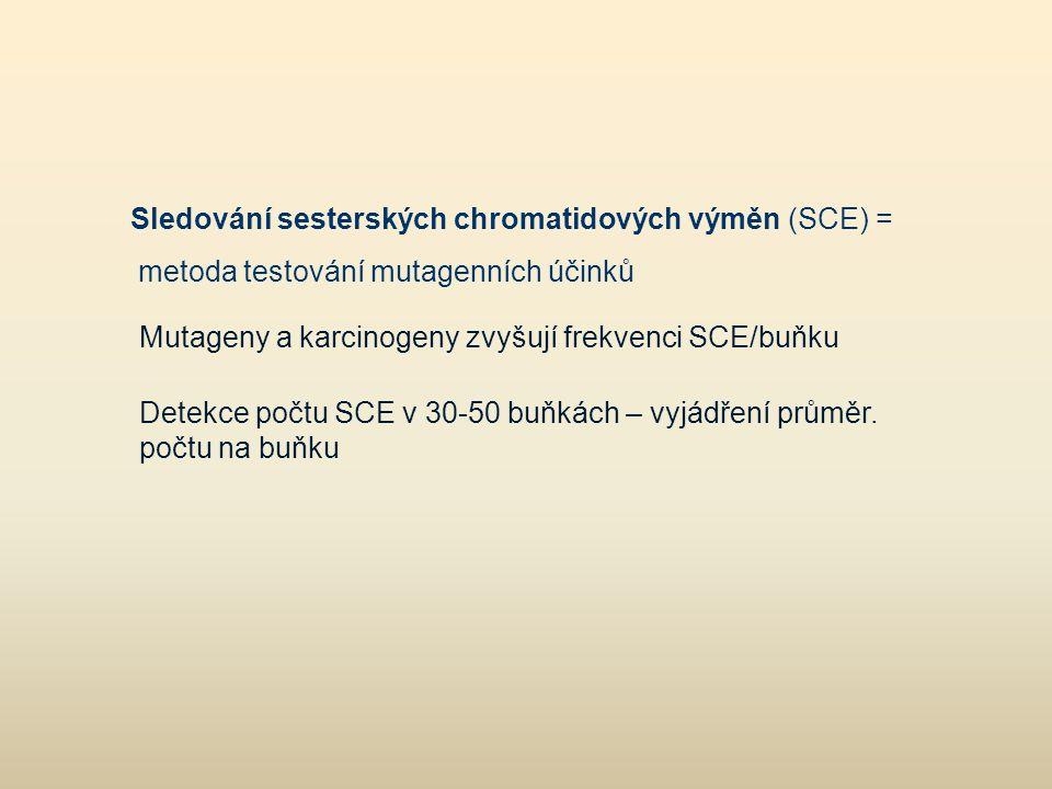 Mutageny a karcinogeny zvyšují frekvenci SCE/buňku Detekce počtu SCE v 30-50 buňkách – vyjádření průměr. počtu na buňku Sledování sesterských chromati