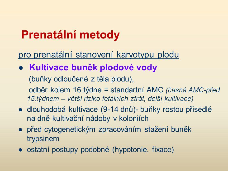 Trypsinizační pruhovací metoda – G pruhy Roztok trypsinu pufr roztok Giemsy v pufru, pH 6,8