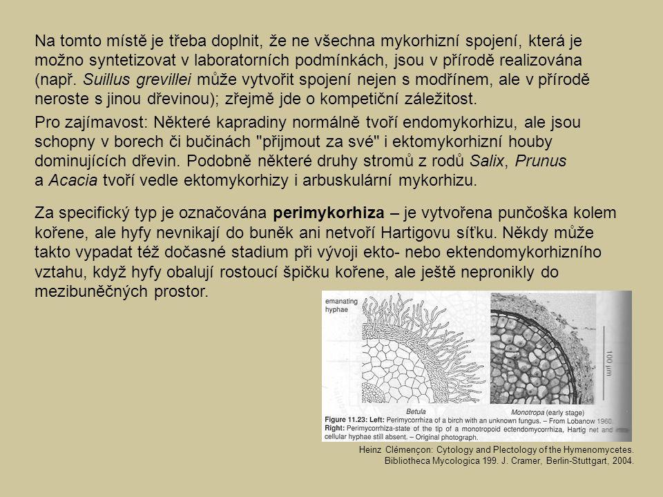 Na tomto místě je třeba doplnit, že ne všechna mykorhizní spojení, která je možno syntetizovat v laboratorních podmínkách, jsou v přírodě realizována