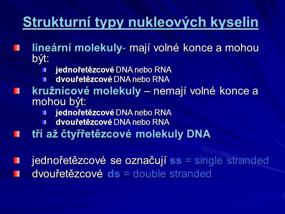 Watson-Crieckovo párování bází Podle tohoto pravidla se prostřednictvím vodíkových vazeb páruje: adenin s thyminem A=T cytozin s guaninem C=G v RNA a při interakcích DNA-RNA se páruje Adenin s uracilem A=U nukleotidové sekvence, které se spojují tímto způsobem se označují jako komplementární