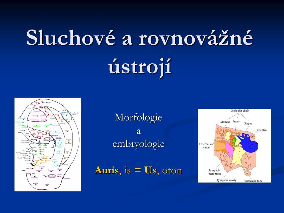 Sluchové a rovnovážné ústrojí Morfologieaembryologie Auris, is = Us, oton
