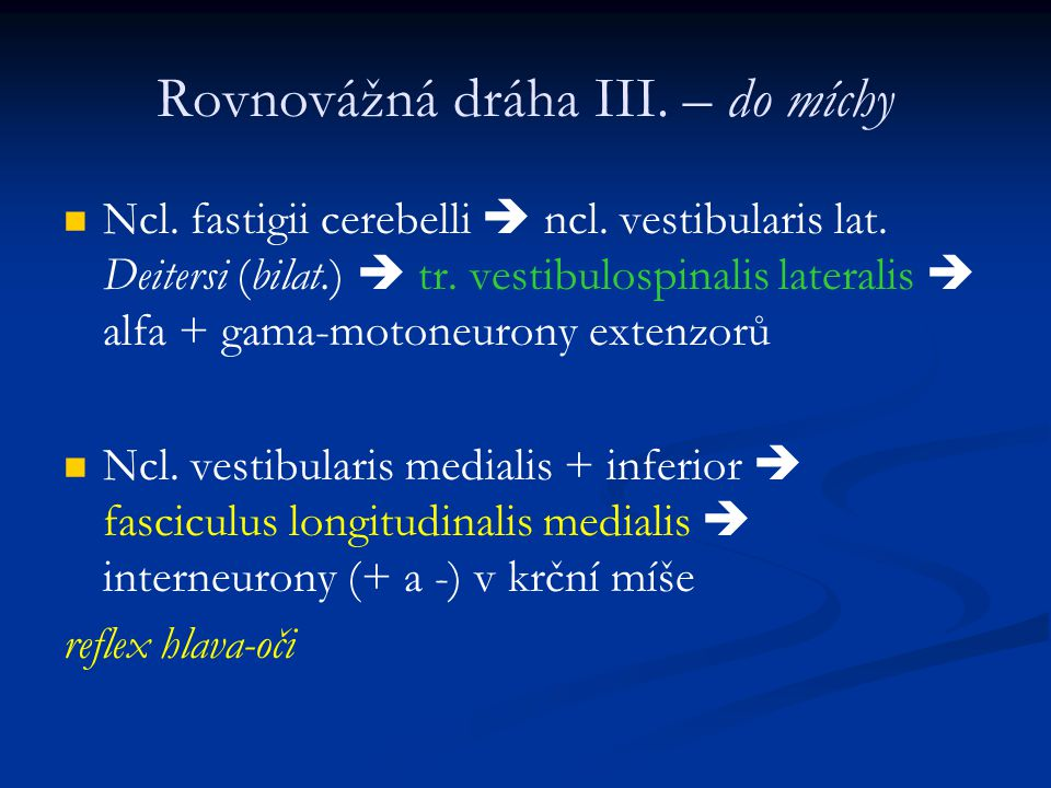 Rovnovážná dráha III. – do míchy Ncl. fastigii cerebelli  ncl. vestibularis lat. Deitersi (bilat.)  tr. vestibulospinalis lateralis  alfa + gama-mo