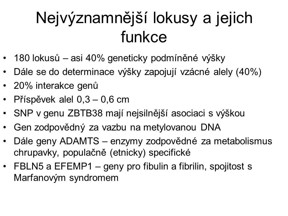 Nejvýznamnější lokusy a jejich funkce 180 lokusů – asi 40% geneticky podmíněné výšky Dále se do determinace výšky zapojují vzácné alely (40%) 20% inte