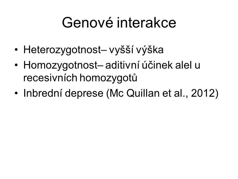 Genové interakce Heterozygotnost– vyšší výška Homozygotnost– aditivní účinek alel u recesivních homozygotů Inbrední deprese (Mc Quillan et al., 2012)