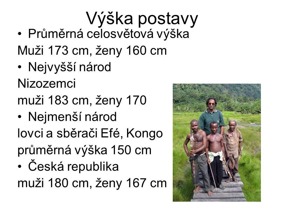 Výška postavy Průměrná celosvětová výška Muži 173 cm, ženy 160 cm Nejvyšší národ Nizozemci muži 183 cm, ženy 170 Nejmenší národ lovci a sběrači Efé, K