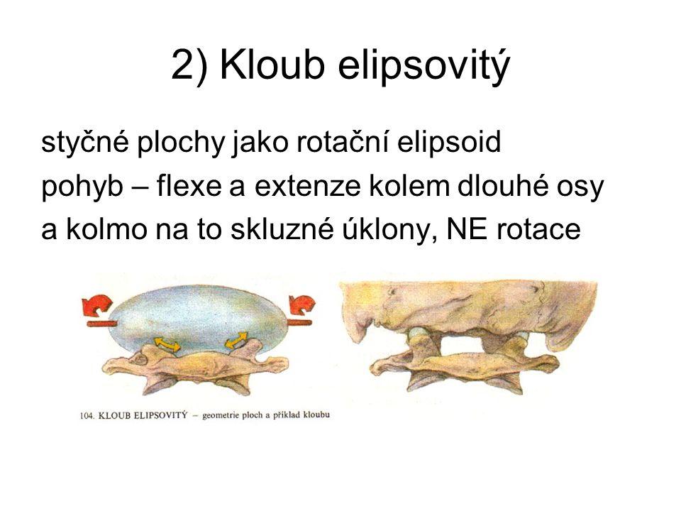 2) Kloub elipsovitý styčné plochy jako rotační elipsoid pohyb – flexe a extenze kolem dlouhé osy a kolmo na to skluzné úklony, NE rotace