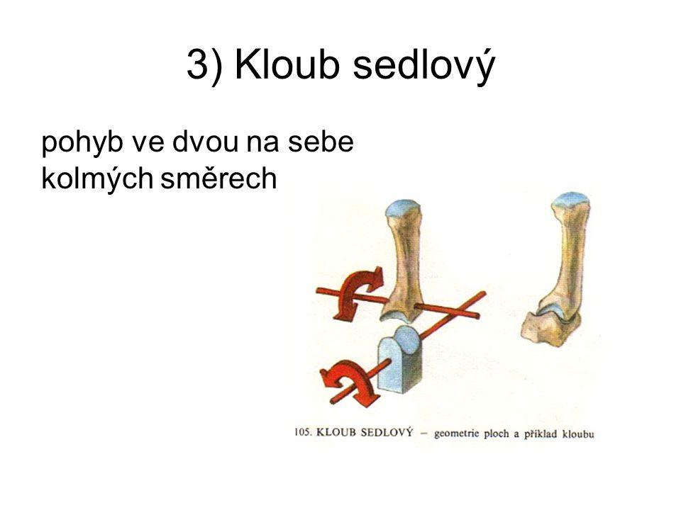 3) Kloub sedlový pohyb ve dvou na sebe kolmých směrech