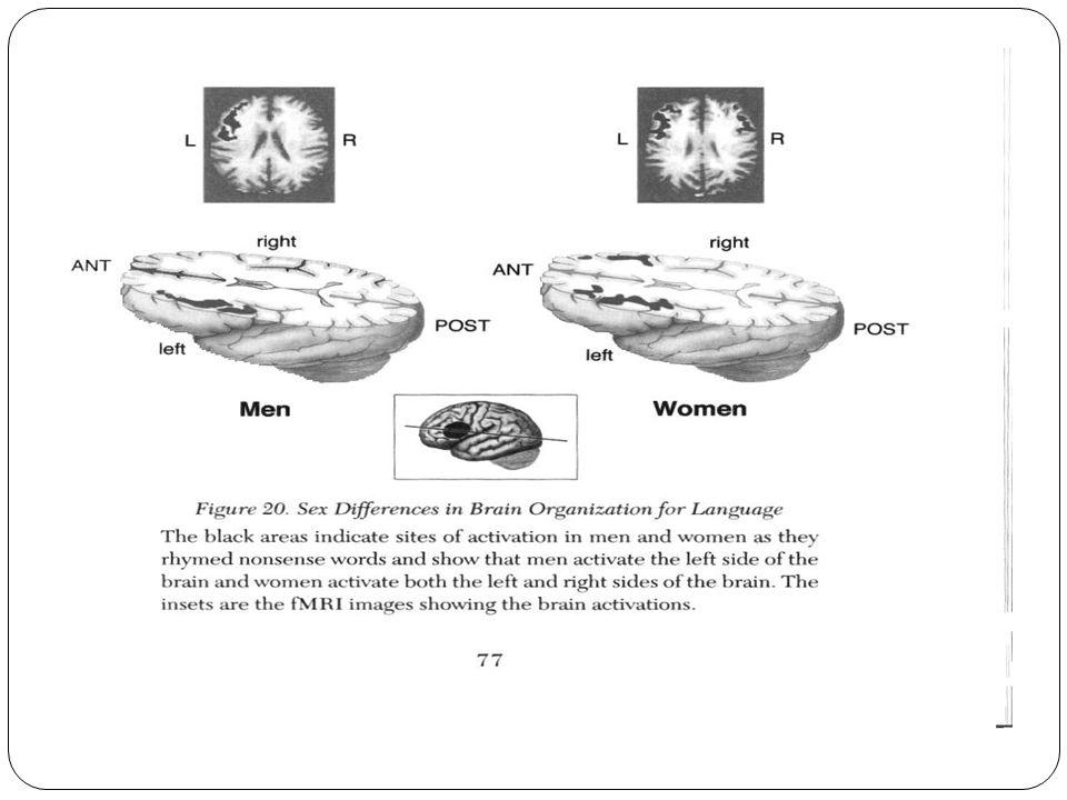 Rozdíly v aktivaci hemisfér mezi dítětem s dyslexií a běžným čtenářem