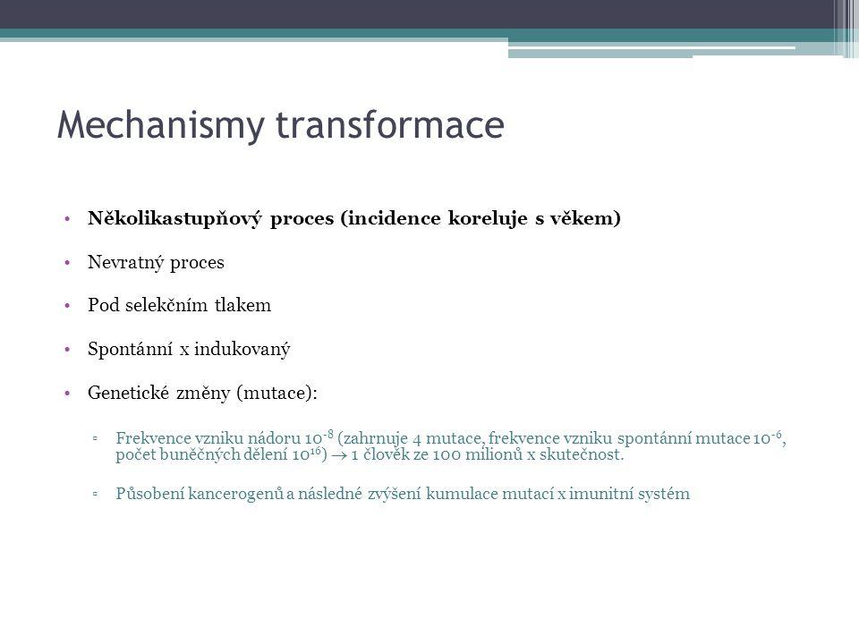Mechanismy transformace Několikastupňový proces (incidence koreluje s věkem) Nevratný proces Pod selekčním tlakem Spontánní x indukovaný Genetické změ