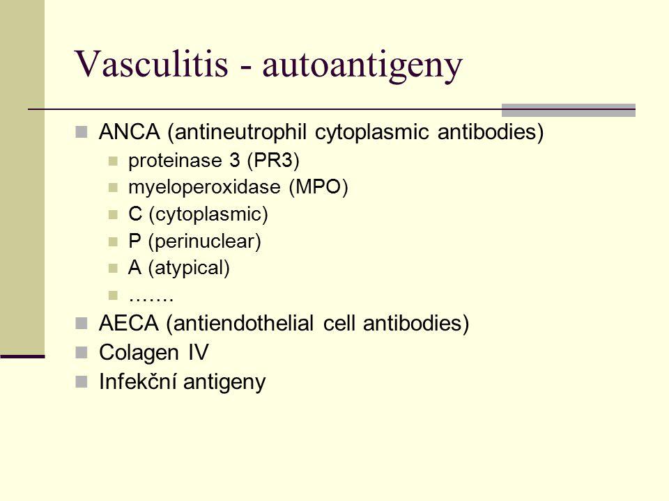 Vasculitis - autoantigeny ANCA (antineutrophil cytoplasmic antibodies) proteinase 3 (PR3) myeloperoxidase (MPO) C (cytoplasmic) P (perinuclear) A (atypical) …….
