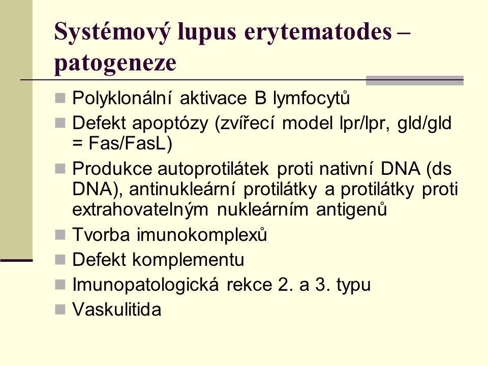Systémový lupus erytematodes – patogeneze Polyklonální aktivace B lymfocytů Defekt apoptózy (zvířecí model lpr/lpr, gld/gld = Fas/FasL) Produkce autoprotilátek proti nativní DNA (ds DNA), antinukleární protilátky a protilátky proti extrahovatelným nukleárním antigenů Tvorba imunokomplexů Defekt komplementu Imunopatologická rekce 2.