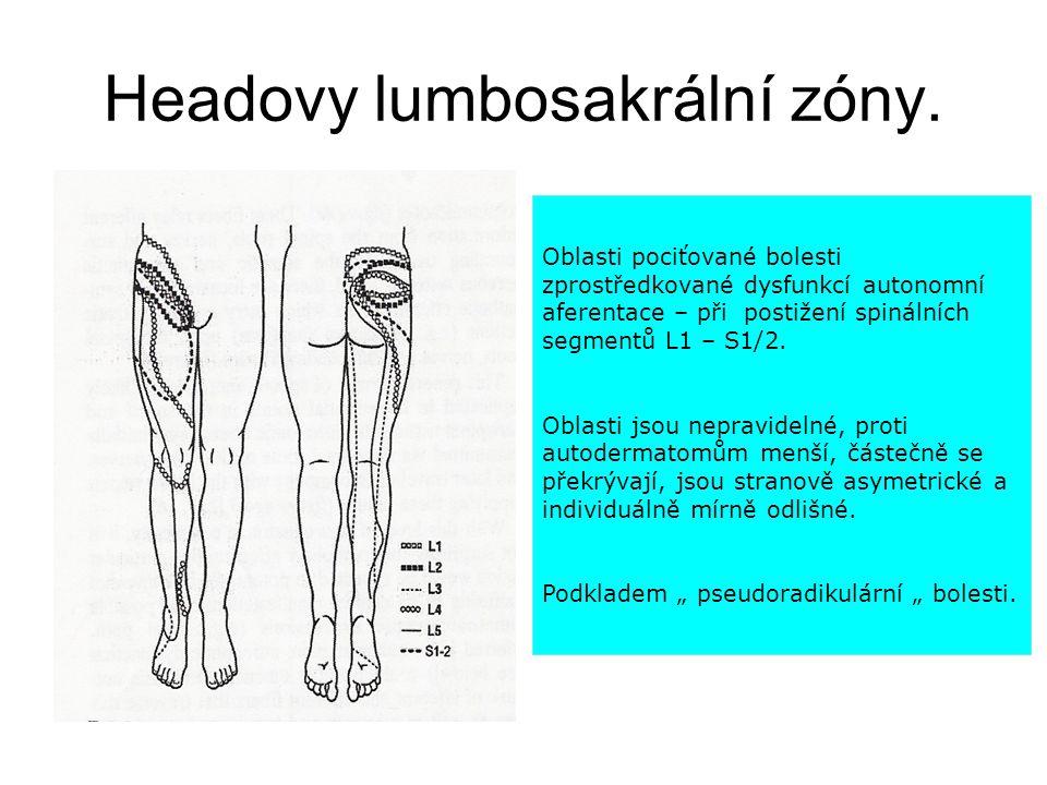 Headovy lumbosakrální zóny. a O Oblasti pociťované bolesti zprostředkované dysfunkcí autonomní aferentace – při postižení spinálních segmentů L1 – S1/