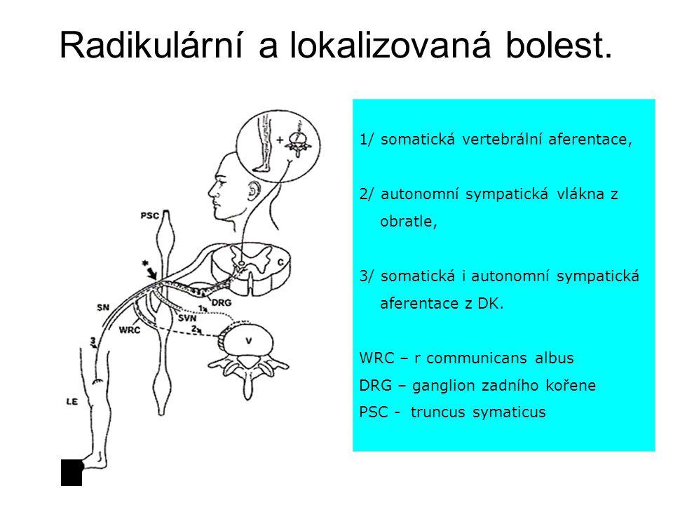 Radikulární a lokalizovaná bolest. 1/ somatická vertebrální aferentace, 2/ autonomní sympatická vlákna z obratle, 3/ somatická i autonomní sympatická