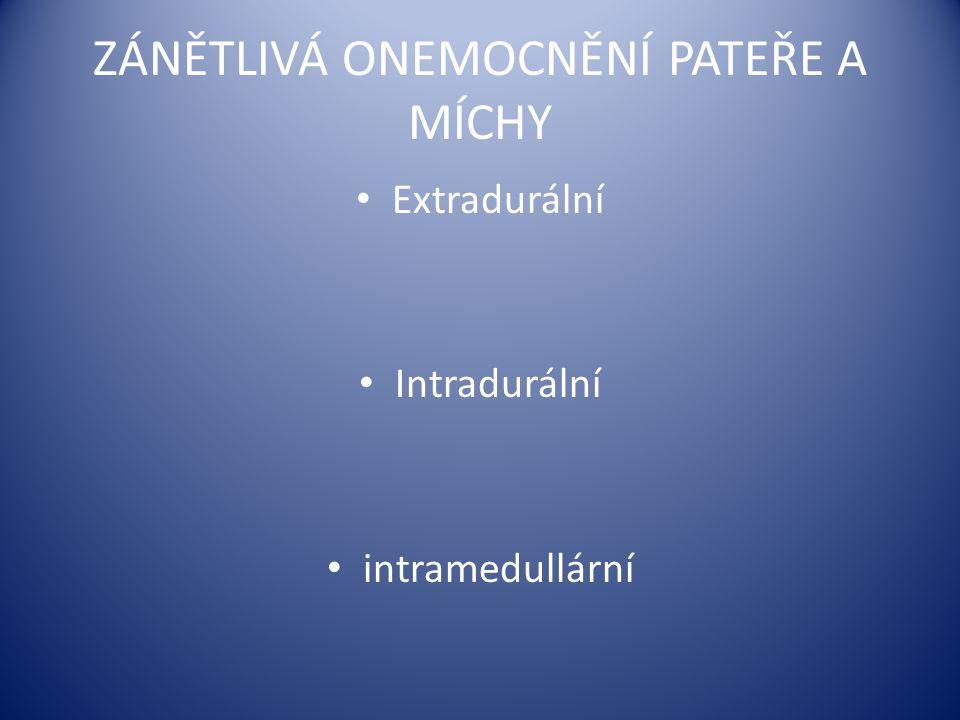ZÁNĚTLIVÁ ONEMOCNĚNÍ PATEŘE A MÍCHY Extradurální Intradurální intramedullární