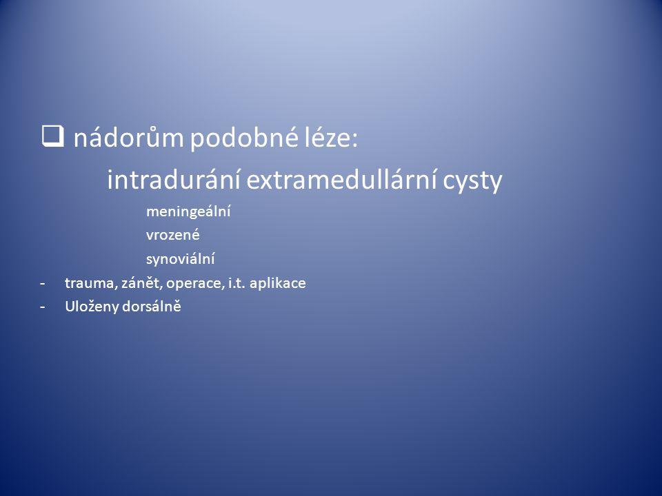  nádorům podobné léze: intradurání extramedullární cysty meningeální vrozené synoviální -trauma, zánět, operace, i.t. aplikace -Uloženy dorsálně