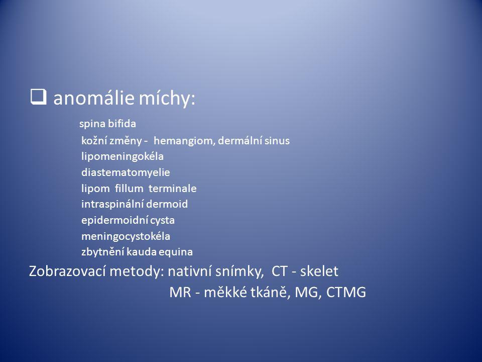  anomálie míchy: spina bifida kožní změny - hemangiom, dermální sinus lipomeningokéla diastematomyelie lipom fillum terminale intraspinální dermoid e