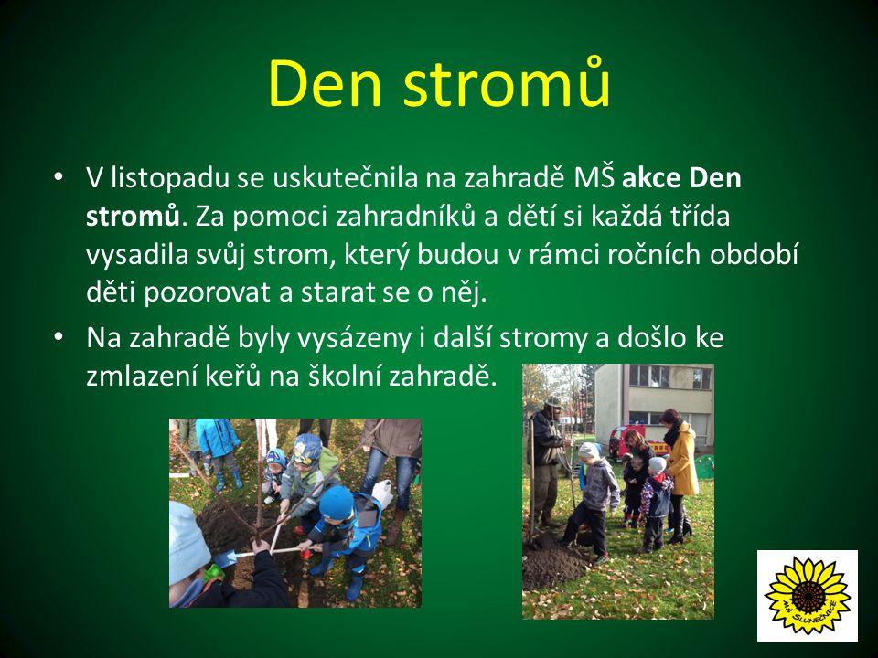Den stromů V listopadu se uskutečnila na zahradě MŠ akce Den stromů.