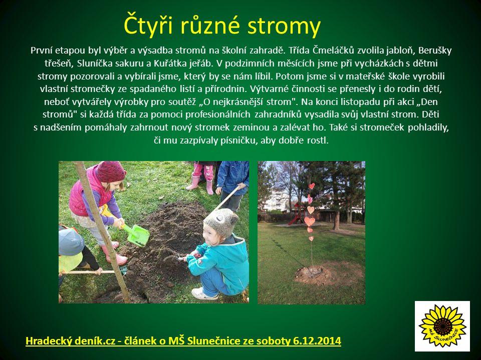 První etapou byl výběr a výsadba stromů na školní zahradě.