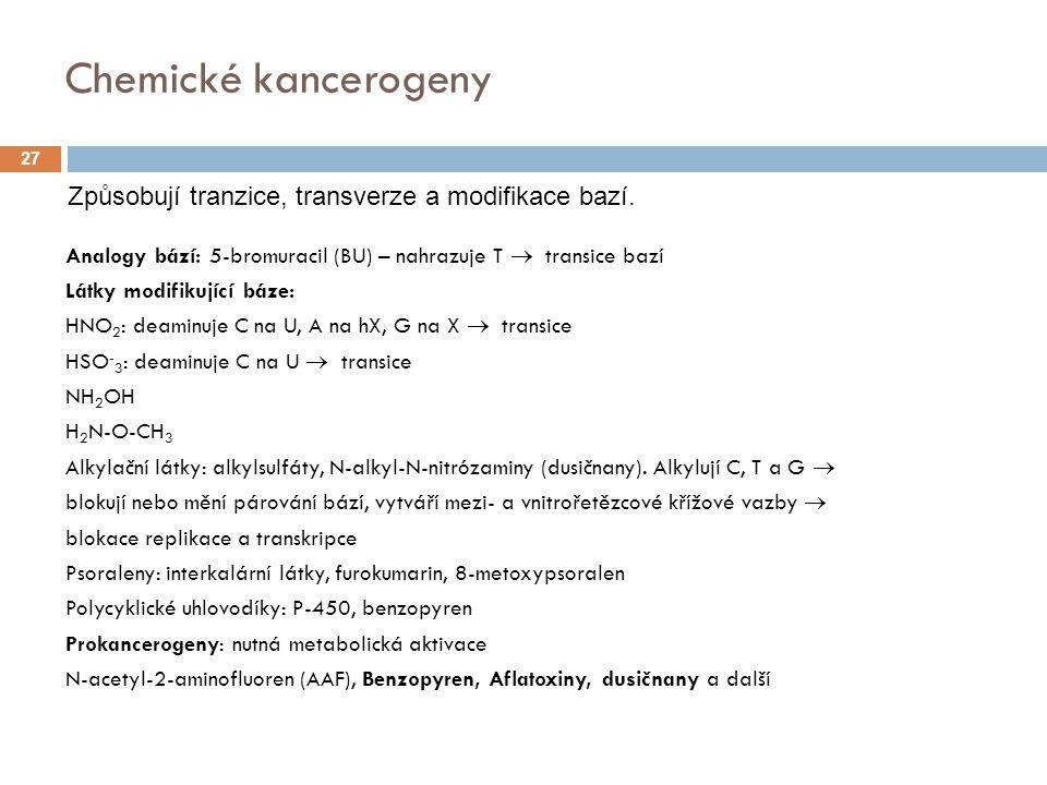 Chemické kancerogeny Analogy bází: 5-bromuracil (BU) – nahrazuje T  transice bazí Látky modifikující báze: HNO 2 : deaminuje C na U, A na hX, G na X  transice HSO - 3 : deaminuje C na U  transice NH 2 OH H 2 N-O-CH 3 Alkylační látky: alkylsulfáty, N-alkyl-N-nitrózaminy (dusičnany).