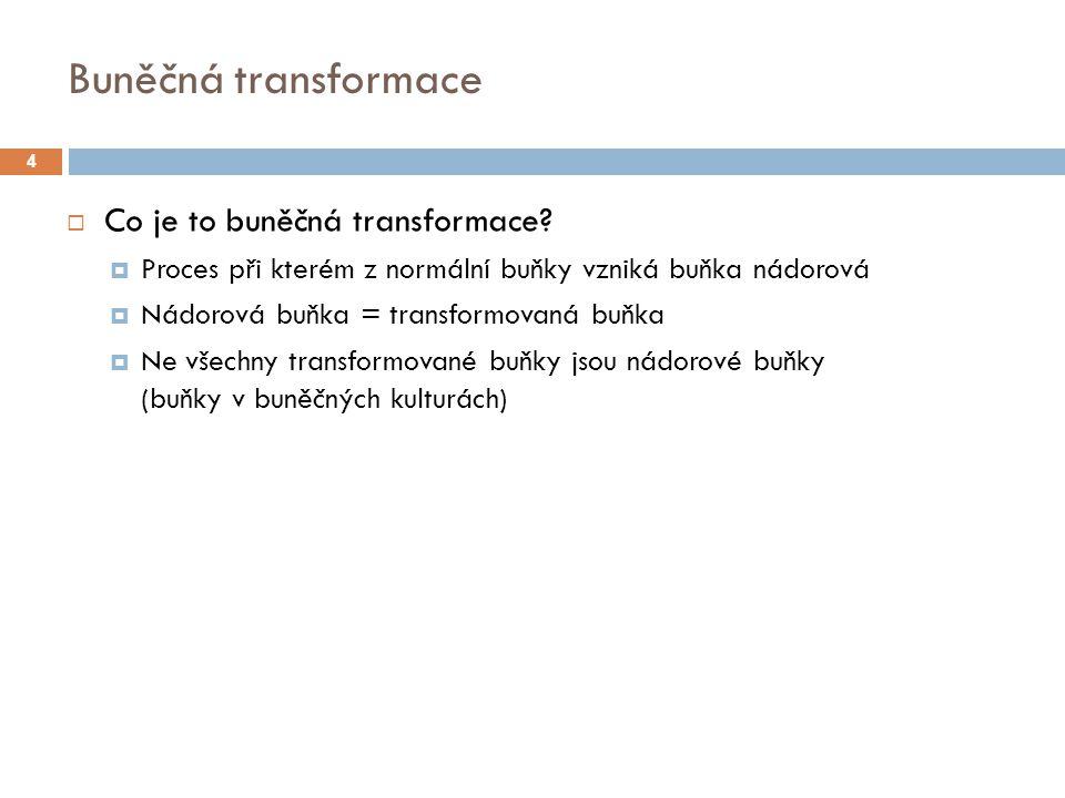 Několikastupňový proces 1.mutace 2. mutace 3. mutace 4.