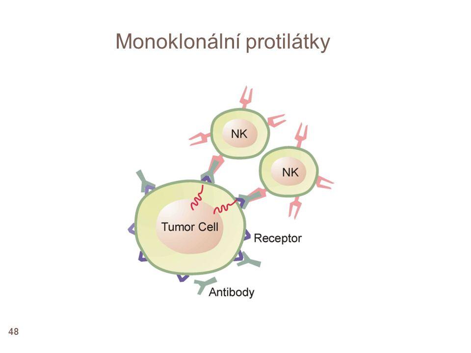 Monoklonální protilátky 48