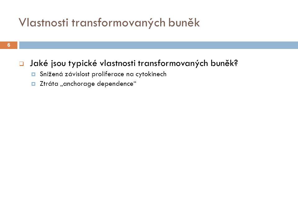 Vlastnosti transformovaných buněk  Jaké jsou typické vlastnosti transformovaných buněk.