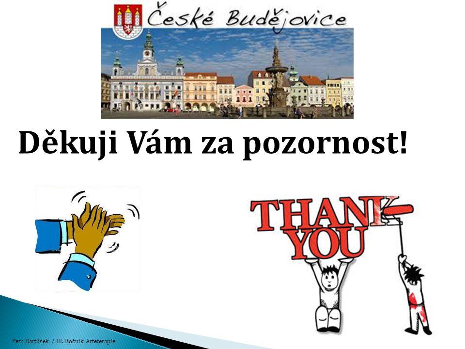 Děkuji Vám za pozornost! Petr Bartůšek / III. Ročník Arteterapie