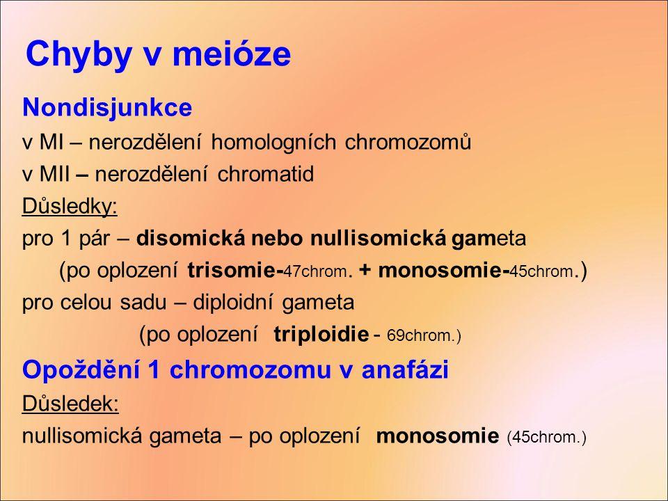 Chyby v meióze Nondisjunkce v MI – nerozdělení homologních chromozomů v MII – nerozdělení chromatid Důsledky: pro 1 pár – disomická nebo nullisomická