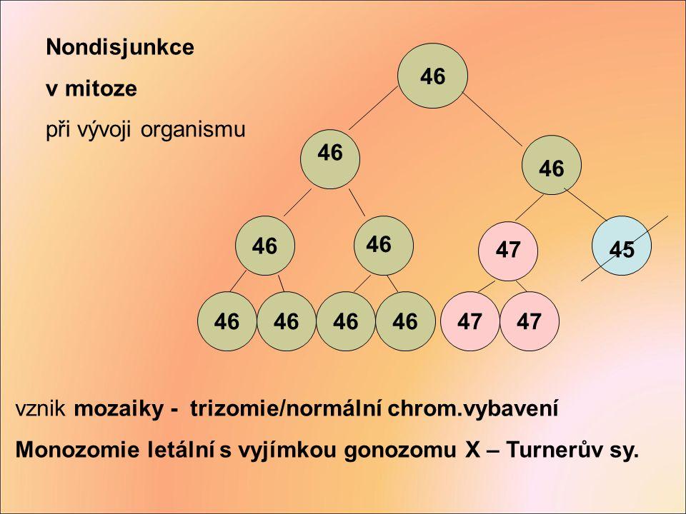 vznik mozaiky - trizomie/normální chrom.vybavení Monozomie letální s vyjímkou gonozomu X – Turnerův sy. 46 4745 46 47 Nondisjunkce v mitoze při vývoji