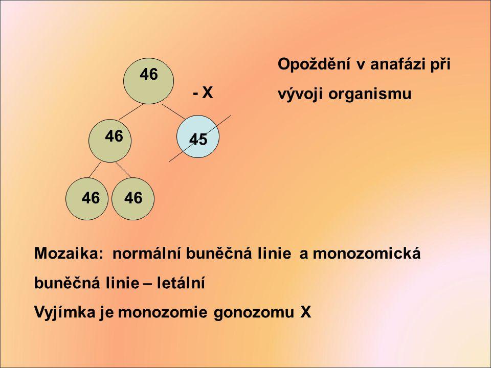 Mozaika: normální buněčná linie a monozomická buněčná linie – letální Vyjímka je monozomie gonozomu X 46 - X 45 Opoždění v anafázi při vývoji organism