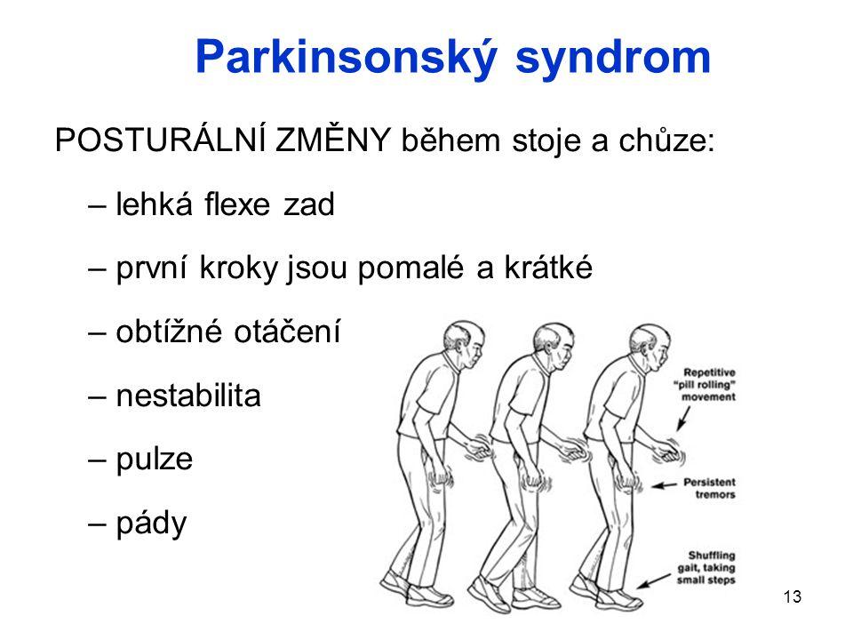 13 POSTURÁLNÍ ZMĚNY během stoje a chůze: – lehká flexe zad – první kroky jsou pomalé a krátké – obtížné otáčení – nestabilita – pulze – pády Parkinsonský syndrom