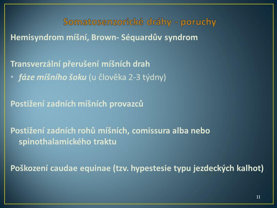 Hemisyndrom míšní, Brown- Séquardův syndrom Transverzální přerušení míšních drah fáze míšního šoku (u člověka 2-3 týdny) Postižení zadních míšních provazců Postižení zadních rohů míšních, comissura alba nebo spinothalamického traktu Poškození caudae equinae (tzv.