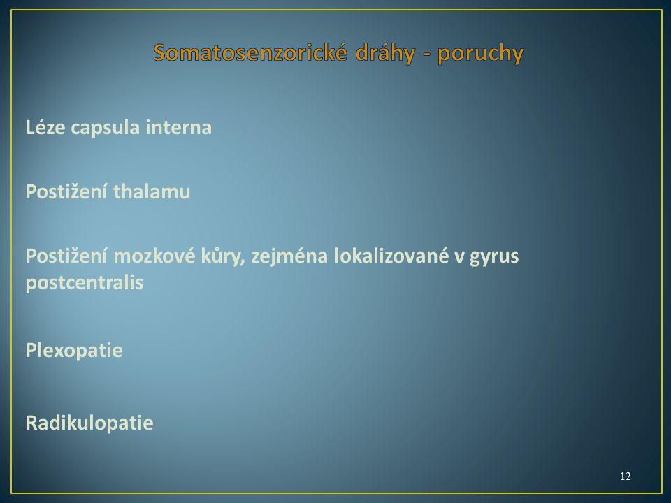 Léze capsula interna Postižení thalamu Postižení mozkové kůry, zejména lokalizované v gyrus postcentralis Plexopatie Radikulopatie 12