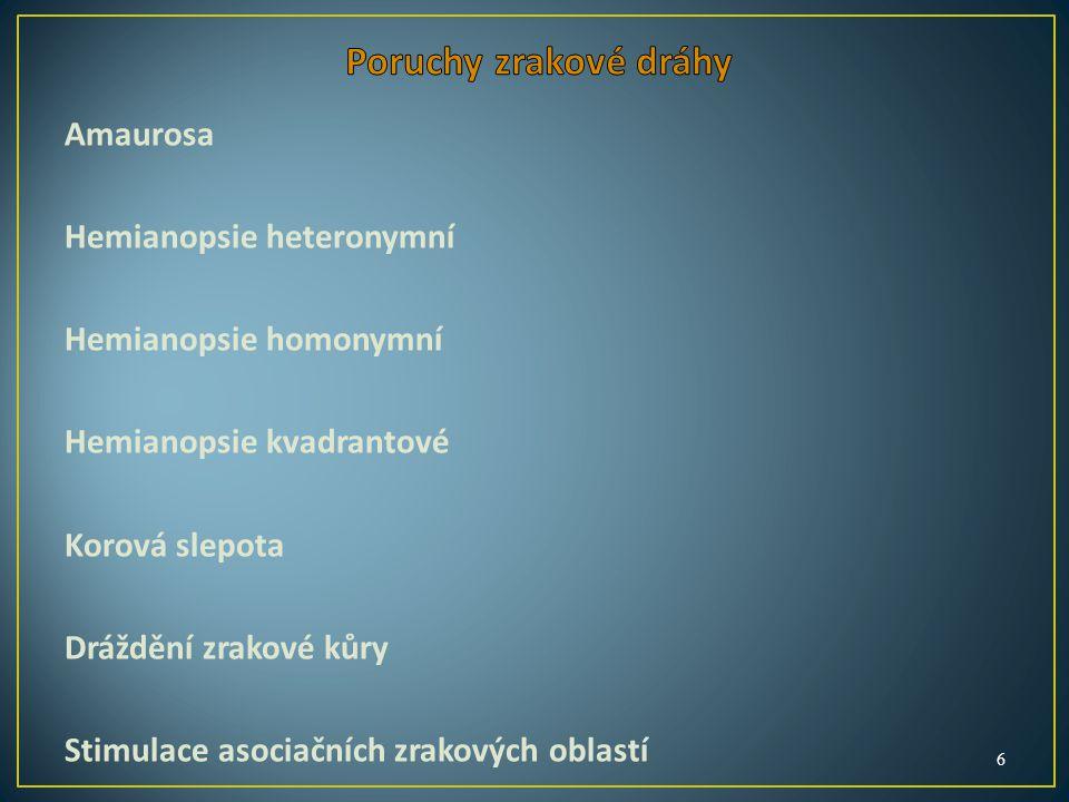 Amaurosa Hemianopsie heteronymní Hemianopsie homonymní Hemianopsie kvadrantové Korová slepota Dráždění zrakové kůry Stimulace asociačních zrakových oblastí 6