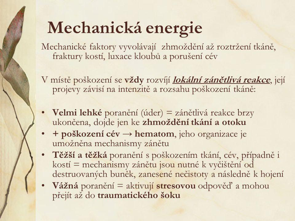 Mechanická energie Mechanické faktory vyvolávají zhmoždění až roztržení tkáně, fraktury kostí, luxace kloubů a porušení cév V místě poškození se vždy rozvíjí lokální zánětlivá reakce, její projevy závisí na intenzitě a rozsahu poškození tkáně: Velmi lehké poranění (úder) = zánětlivá reakce brzy ukončena, dojde jen ke zhmoždění tkání a otoku + poškození cév → hematom, jeho organizace je umožněna mechanismy zánětu Těžší a těžká poranění s poškozením tkání, cév, případně i kostí = mechanismy zánětu jsou nutné k vyčištění od destruovaných buněk, zanesené nečistoty a následně k hojení Vážná poranění = aktivují stresovou odpověď a mohou přejít až do traumatického šoku