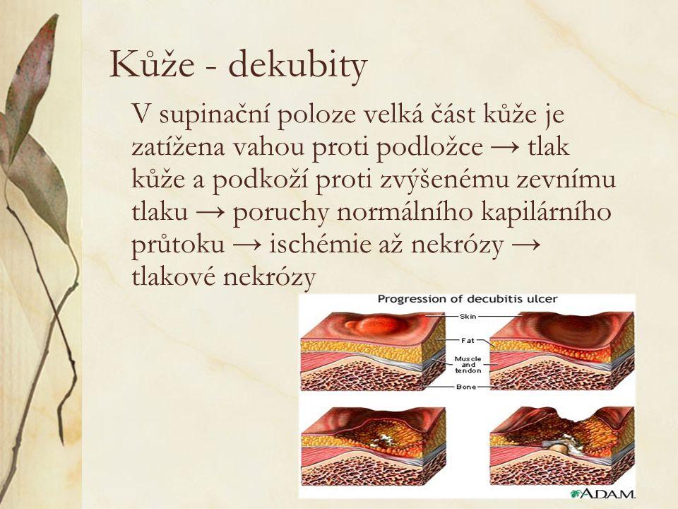 Kůže - dekubity V supinační poloze velká část kůže je zatížena vahou proti podložce → tlak kůže a podkoží proti zvýšenému zevnímu tlaku → poruchy normálního kapilárního průtoku → ischémie až nekrózy → tlakové nekrózy