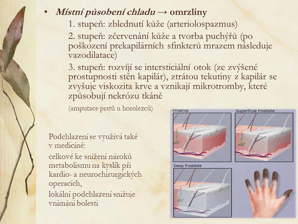 Místní působení chladu → omrzliny 1.stupeň: zblednutí kůže (arteriolospazmus) 2.