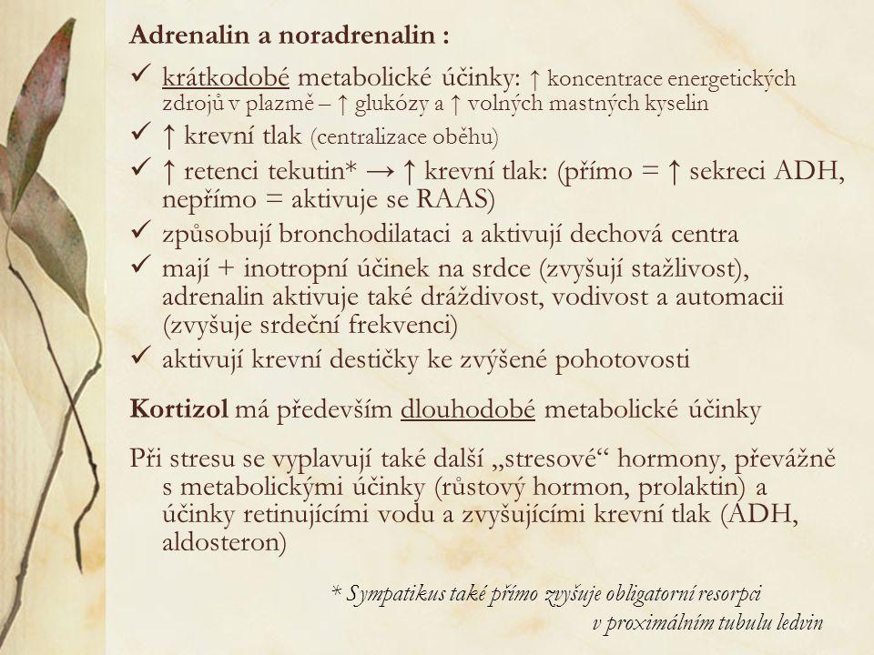 """Adrenalin a noradrenalin : krátkodobé metabolické účinky: ↑ koncentrace energetických zdrojů v plazmě – ↑ glukózy a ↑ volných mastných kyselin ↑ krevní tlak (centralizace oběhu) ↑ retenci tekutin* → ↑ krevní tlak: (přímo = ↑ sekreci ADH, nepřímo = aktivuje se RAAS) způsobují bronchodilataci a aktivují dechová centra mají + inotropní účinek na srdce (zvyšují stažlivost), adrenalin aktivuje také dráždivost, vodivost a automacii (zvyšuje srdeční frekvenci) aktivují krevní destičky ke zvýšené pohotovosti Kortizol má především dlouhodobé metabolické účinky Při stresu se vyplavují také další """"stresové hormony, převážně s metabolickými účinky (růstový hormon, prolaktin) a účinky retinujícími vodu a zvyšujícími krevní tlak (ADH, aldosteron) * Sympatikus také přímo zvyšuje obligatorní resorpci v proximálním tubulu ledvin"""