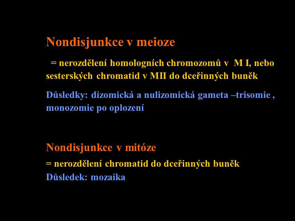 Meiotická nondisjunkce + + trizomická zygota MI MII v II.meiotickém dělenív I.meiotickém dělení