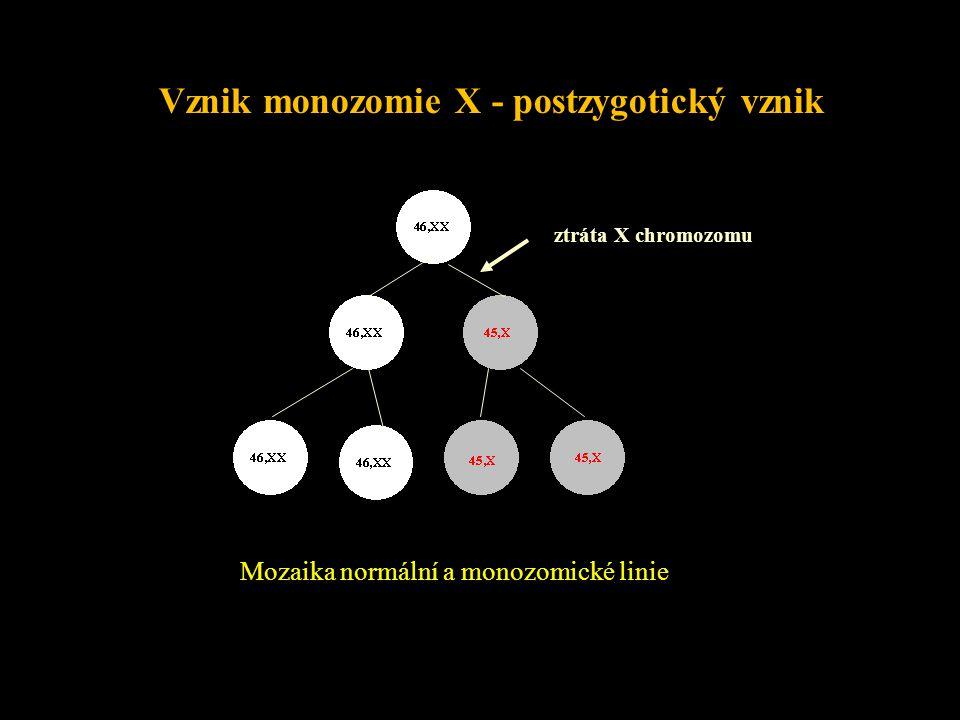 Důsledky numerických CHA w monozomie X= jediná monozomie slučitelná se životem ale 99% monozomií X se potrácí w autozomální monozomie = letální (časný spontánní abort) w autozomální trizomie= pouze některé slučitelné se životem (+21, +18, +13, mos +8) w ostatní autozomální trizomie - pouze v potratech (+16, aj.) w nondisjunkce : v oogeneze > ve spermiogeneze w u +21 - 80% mat : 20 pat w v M I > v M II u +21 mat - 80% v M I : 20 v M II