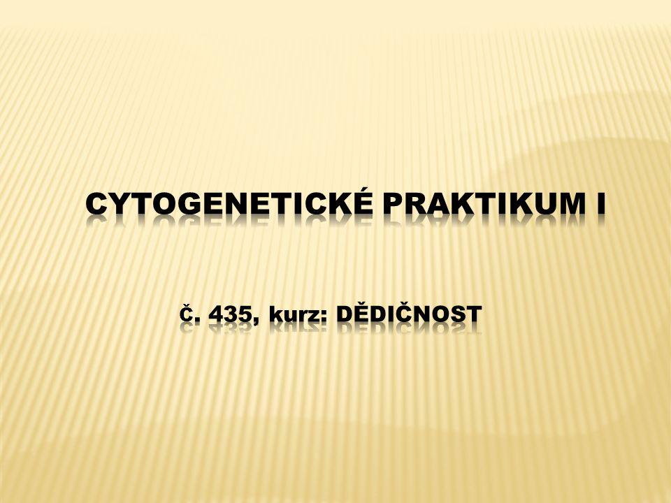 Klíčová slova: Vrozené a získané chromozomální aberace, numerické chromozomální abnormality, strukturní chromozomální aberace balancované a nebalancované, částečná monozomie, částečná trizomie, delece terminální a intersticiální, duplikace, reciproká translokace, Robertsonská translokace, inverze pericentrická a paracentrická, inzerce, dicentrický chromozom, prsténcový chromozom, marker chromozom, izochromozom, derivovaný chromozom, rekombinantní chromozom, nerovnoměrný crossing- over, meiotická rekombinace, mikrodeleční syndromy, ovariální teratom, hydatiformní mola, prenatální a postnatální cytogenetické vyšetření, amniocentéza (AMC), vyšetření buněk choriových klků (CVS), kordocentéza.